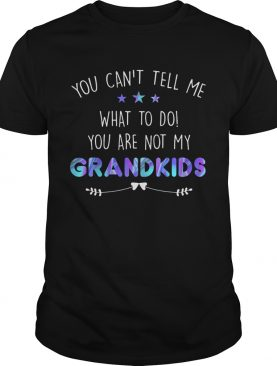 You cant tell me what to do you are not my grandkids stars shirt