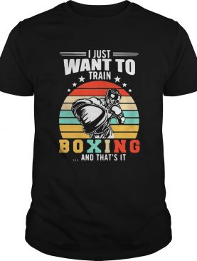 I Just Want To Train Boxing And Thats It Vintage Stars shirt