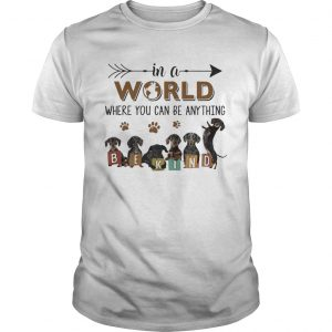 In A World Where You Can Be Anything Be Kind shirt