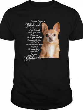 I Know I'm Just A Chihuahua But If You Feel Sad I'll Be Your Smile shirt