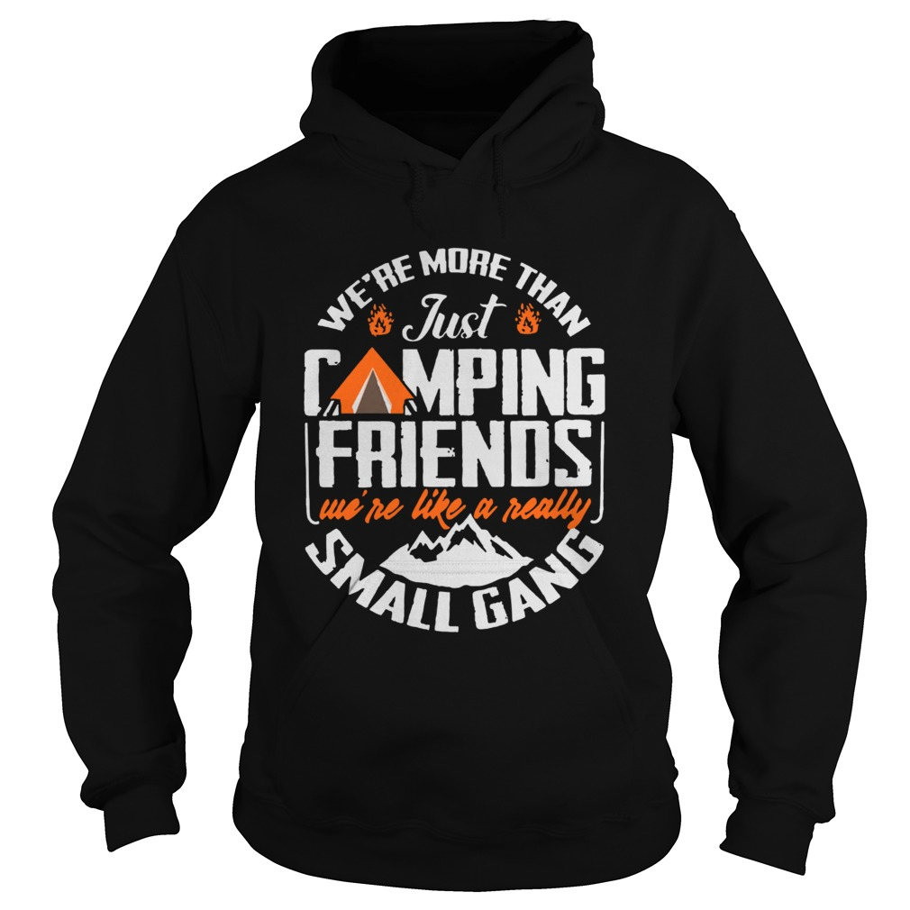 Were More Than Just Camping Friends Were Like A Really Small Gang  Hoodie
